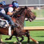 Romans Racing Stables, Inc